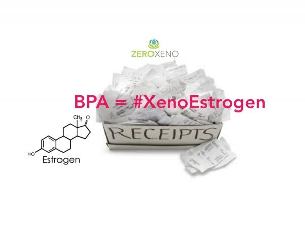 Is Estrogen Hiding in Your Store Receipt?