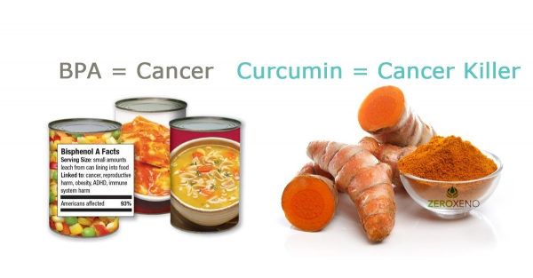 BPA Causes Cancer & Curcumin Kills Cancer