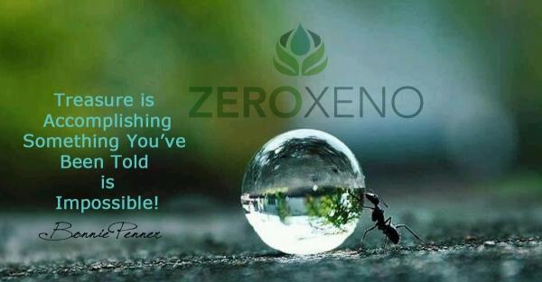 Foods That Detoxify Xenoestrogens