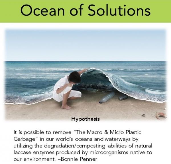 Ocean of Solutions