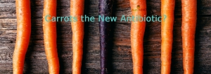Carrots - Are They the New Antibiotic?