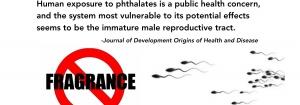 Perfume or Poison? Micro*enis & Phthalates?!