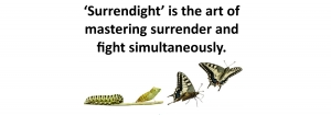 Surrendight - It's All You've Got!