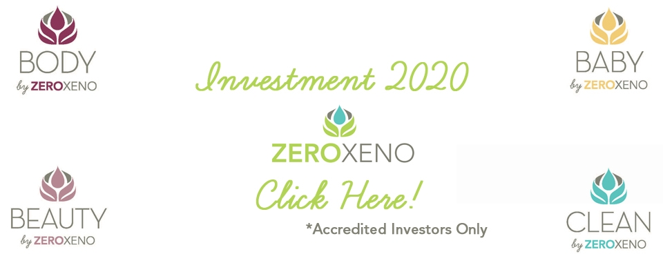 Investment 2020